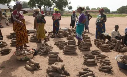 Price of yam up by 40% in Enugu State - Vanguard News yam - Vanguard