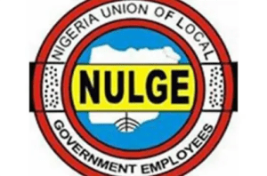 NFIU, local government