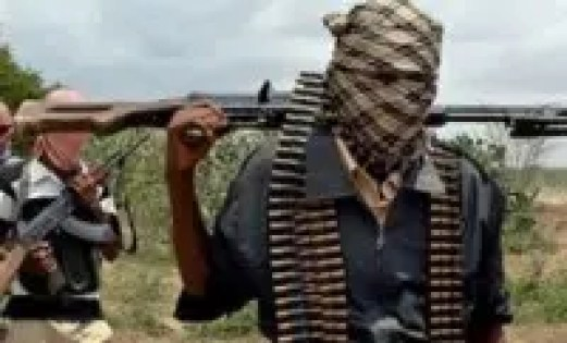 Abducted councilor, family members freed in Kastina