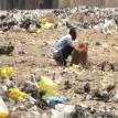 FG set to kick-off campaign against open defecation Nov 19