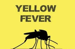 Yellow Fever, Bauchi, NCDC
