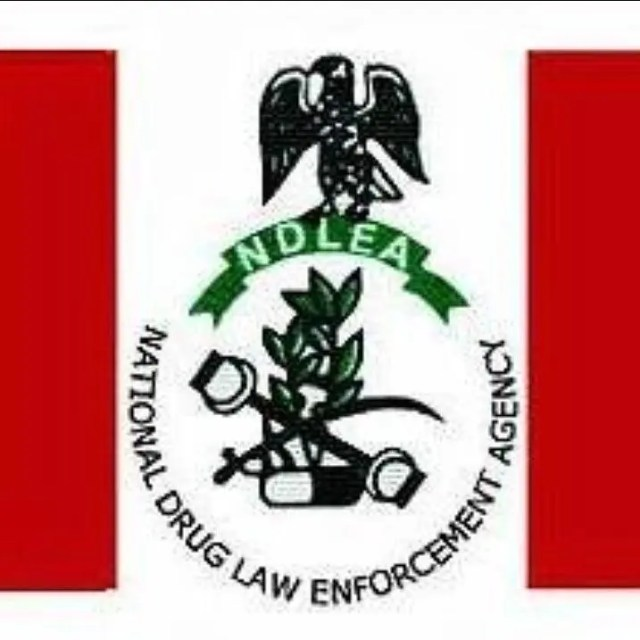 Image result wey dey for NDLEA Arrests 65 Suspects, Seizes 4582.57kg Of Narcotics In Edo State