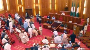 Senate, Border Closure by FG Divides Senators