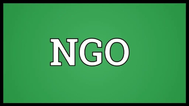 Boko Haram, Questionable, NGOs,Civil Rights group