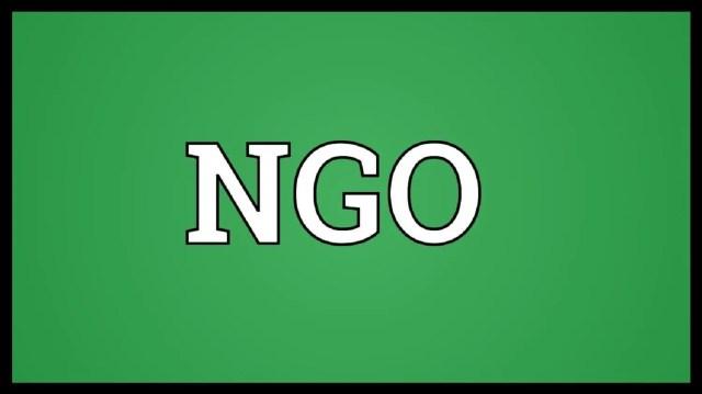 Boko Haram, Questionable, NGOs,Civil Rights group