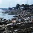 NIGERIA'S ENVIRONMENT: Restore or die