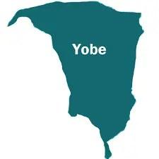 Lone Yobe PDP lawmaker returns to APC
