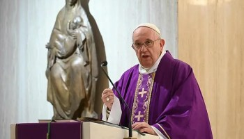 Same-sex marriage: CAN backs Pope Francis, seeks reversal of gay law in African countries