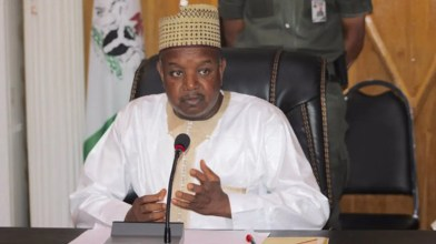 Grant autonomy to local govts in Nigeria, activist tells governors
