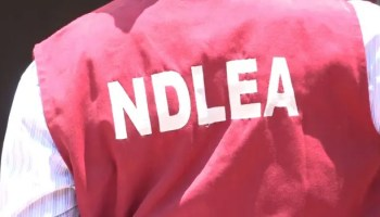 Ndlea, Lagos-Oyo axis, epicentre of drug abuse in Nigeria —Marwa