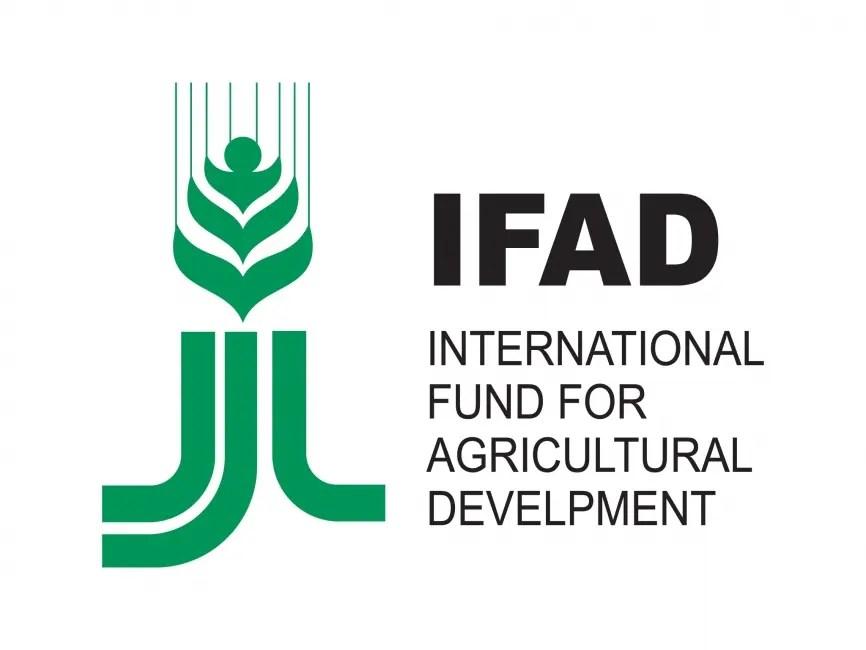 983 ifad logo 1