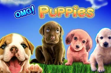 Omg puppies