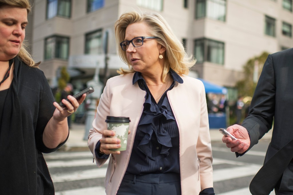 Rep.-elect Liz Cheney, R-Wyo., talks with the media outside of the Capitol Hill Hotel. (Tom Williams/CQ Roll Call)
