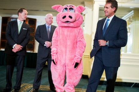 From left, Sens. Pat Toomey, R-Pa., John McCain, R-Ariz., and Jeff Flake, R-Ariz., appeared with Pigfoot, a mascot for Citizens Against Government Waste. (Tom Williams/CQ Roll Call File Photo)