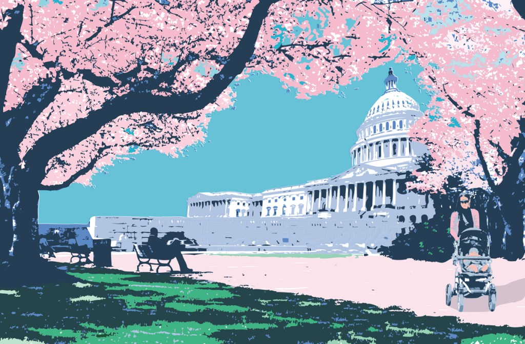 blossoms So You Want to Have a Baby? What to Know About Capitol Hill Policies