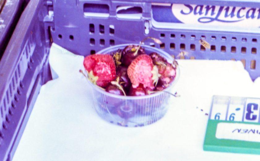 超市的一盒雜莓... 好多蜜蜂!