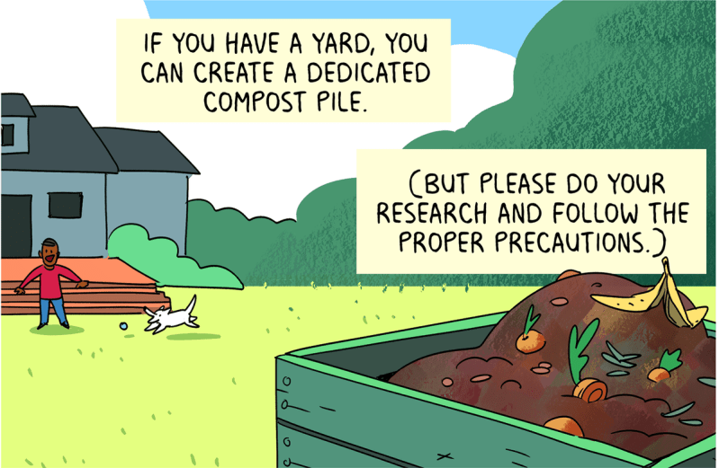 If you have a yard, you can create a dedicated compost pile (but please do your research and follow the proper precautions).