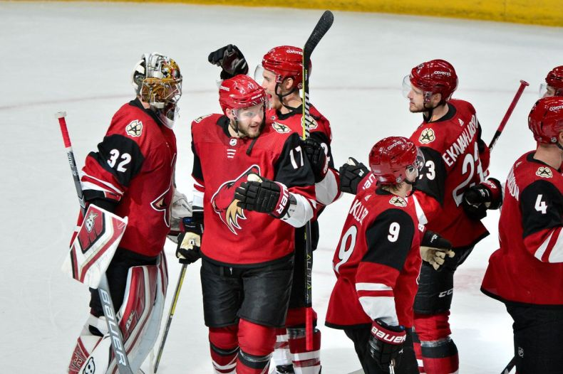 Around the West: the Arizona Coyotes are actually good - Mile High Hockey