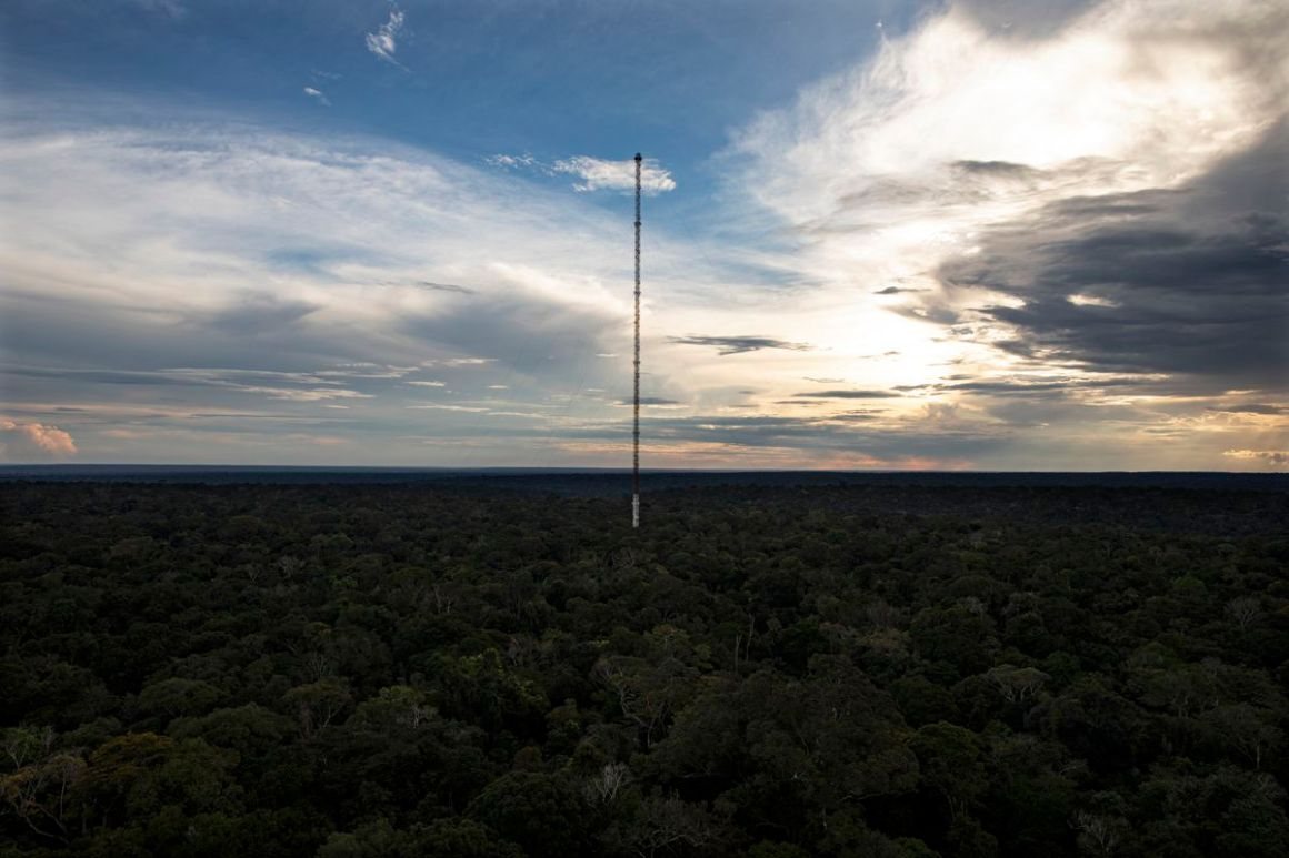A view of the Amazon Tall Tower Observatory from another research tower.