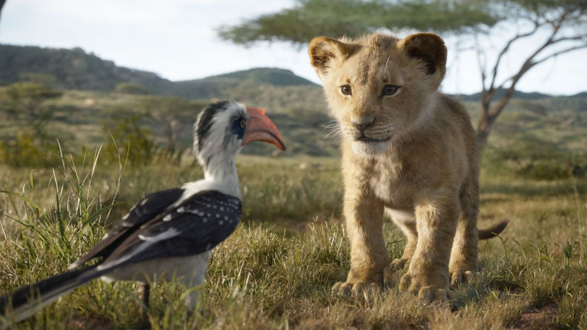 Photo of Simba and Zazu from the film