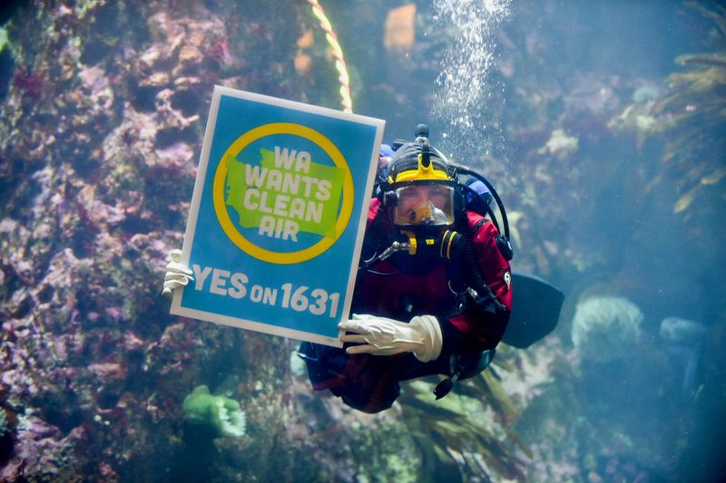 A photo of an underwater diver holding a sign supporting a carbon-pricing initiative.