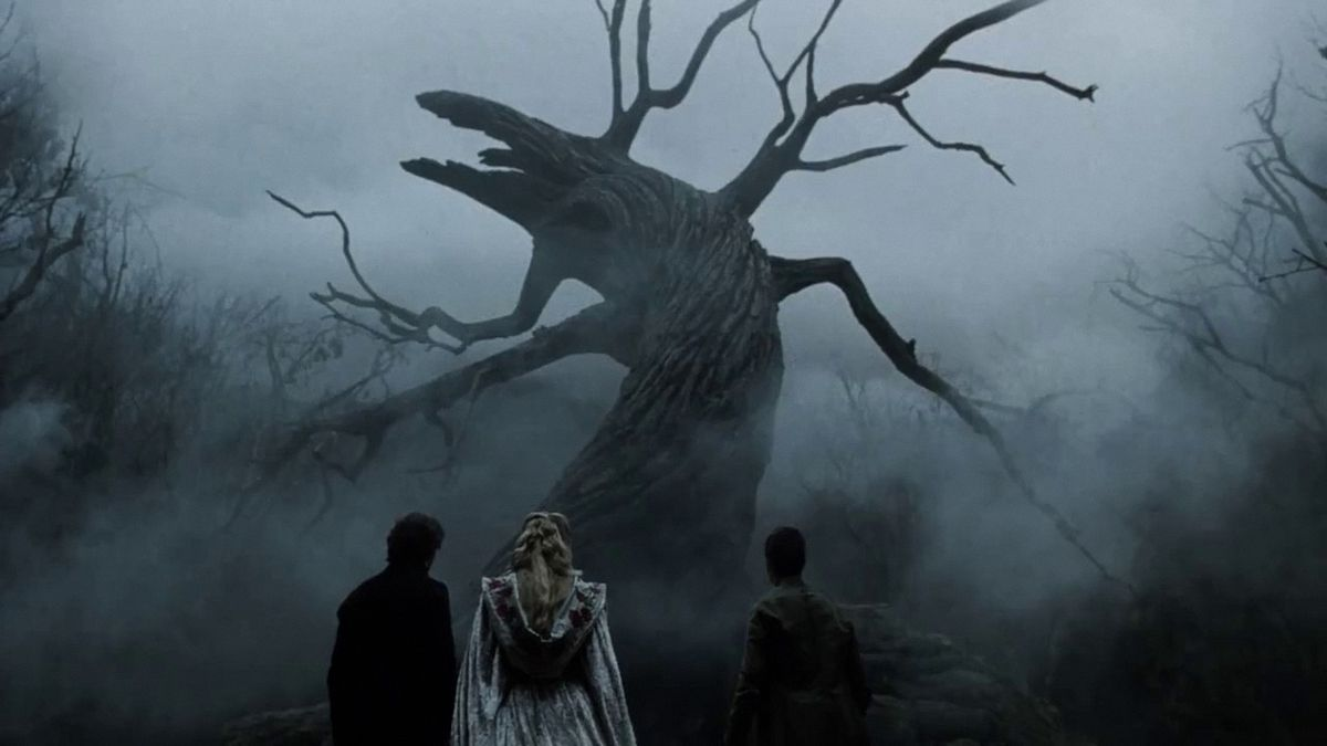 a crooked tree in a sleeping hollow
