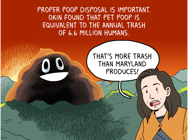 Proper poop disposal is important. Okin found that pet poop is equivalent to the annual trash of 6.6 million humans. That's more trash than Maryland produces!