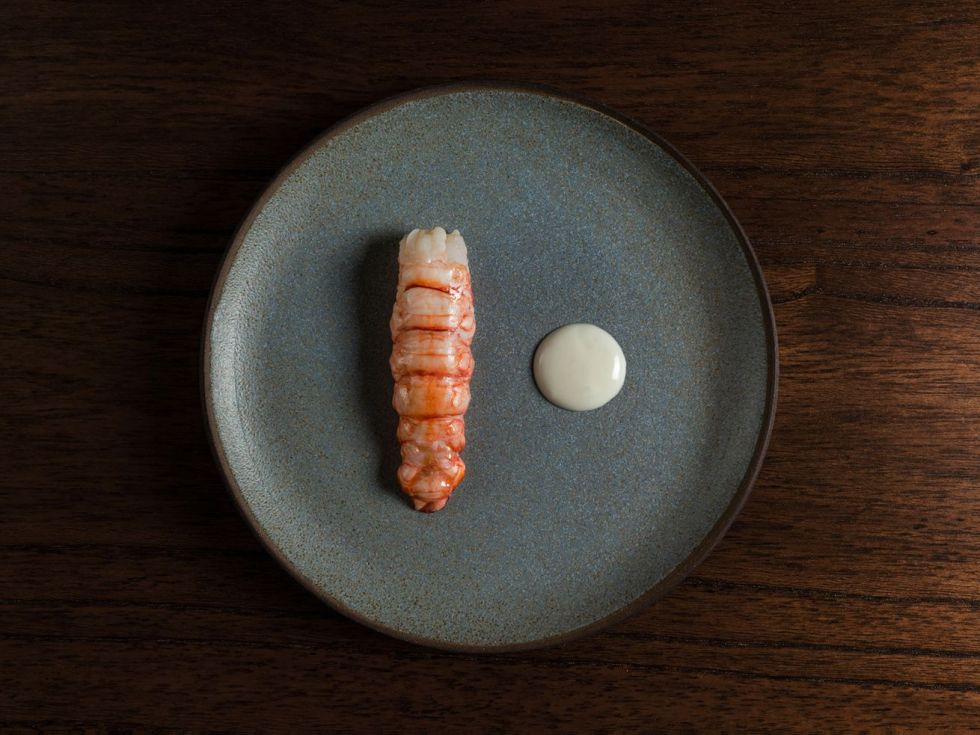 A piece of prawn or similar meat next to a small circle of white sauce on a gray stoneware plate on a wooden surface
