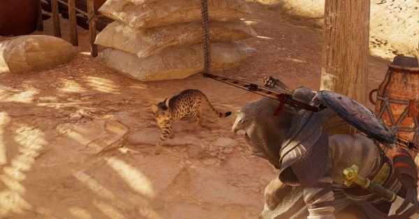 Assassin's Creed Origins: This is how you pet cats - Polygon