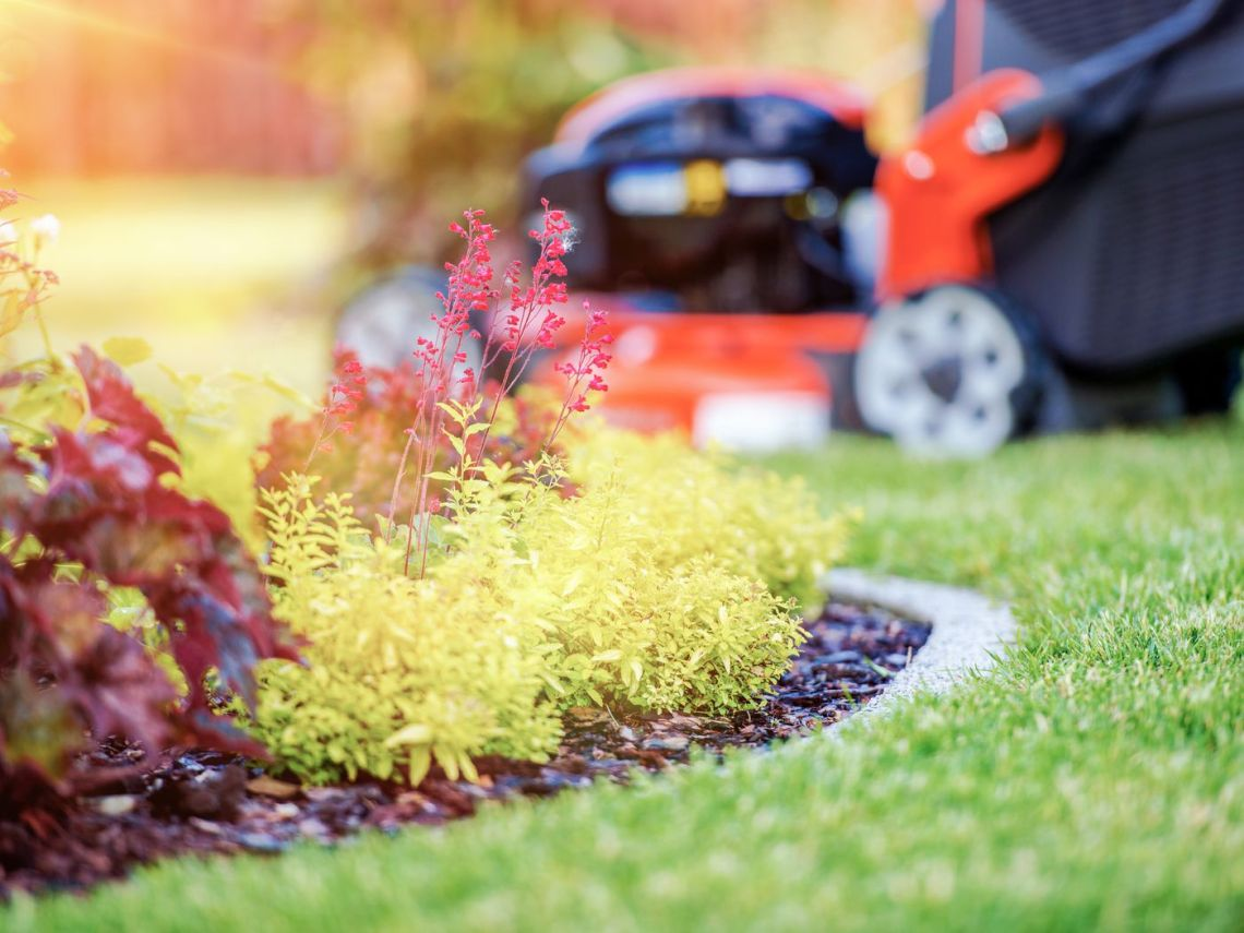 The Best Year Round Lawn Care Schedule This Old House