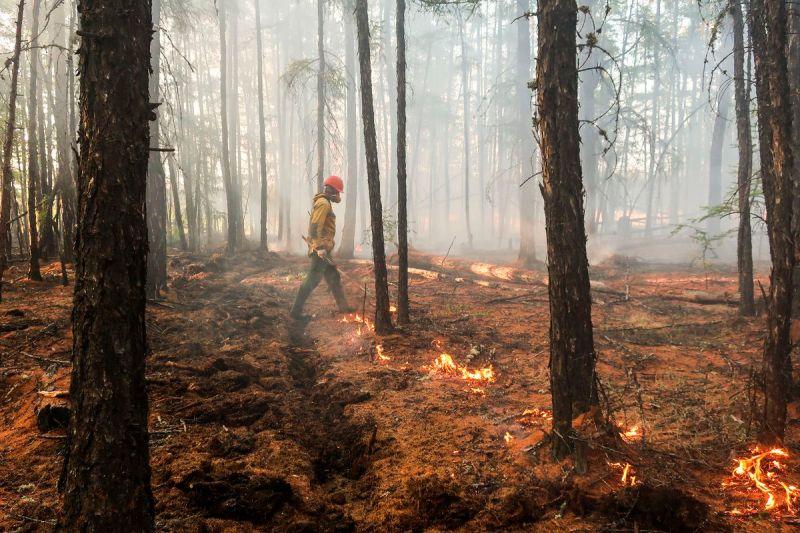 A firefighter makes a controlled burn along a firebreak