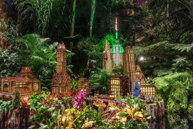 Image result for ny botanical garden train show