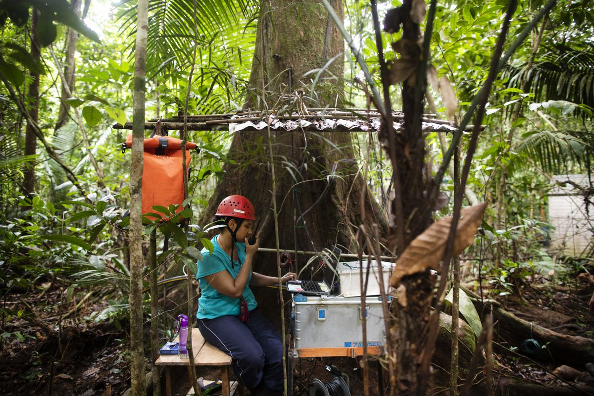 Scientist Cybelli Barbosa at her research station near the Amazon Tall Tower Observatory.