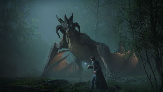 a Hogwarts student holding a wand looks up at a dragon in the forest at night in Hogwarts Legacy