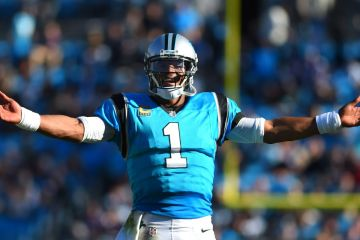 Image result for panthers
