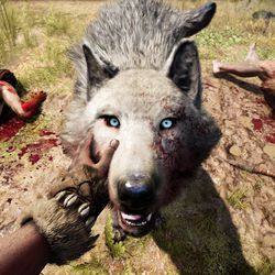 Far Cry Primals Deadliest Weapons Are The Predators You
