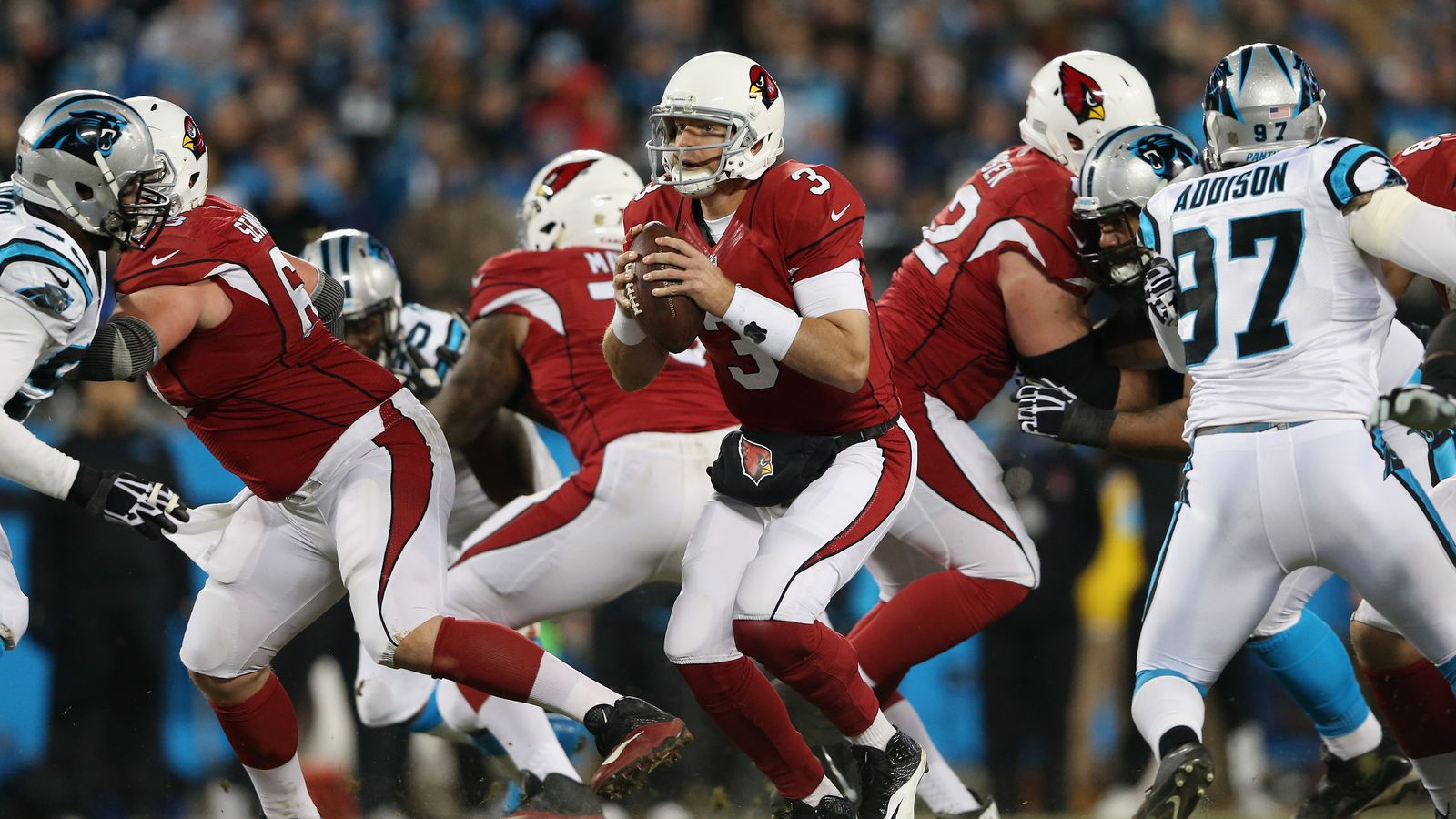 American Who Are Cardinals