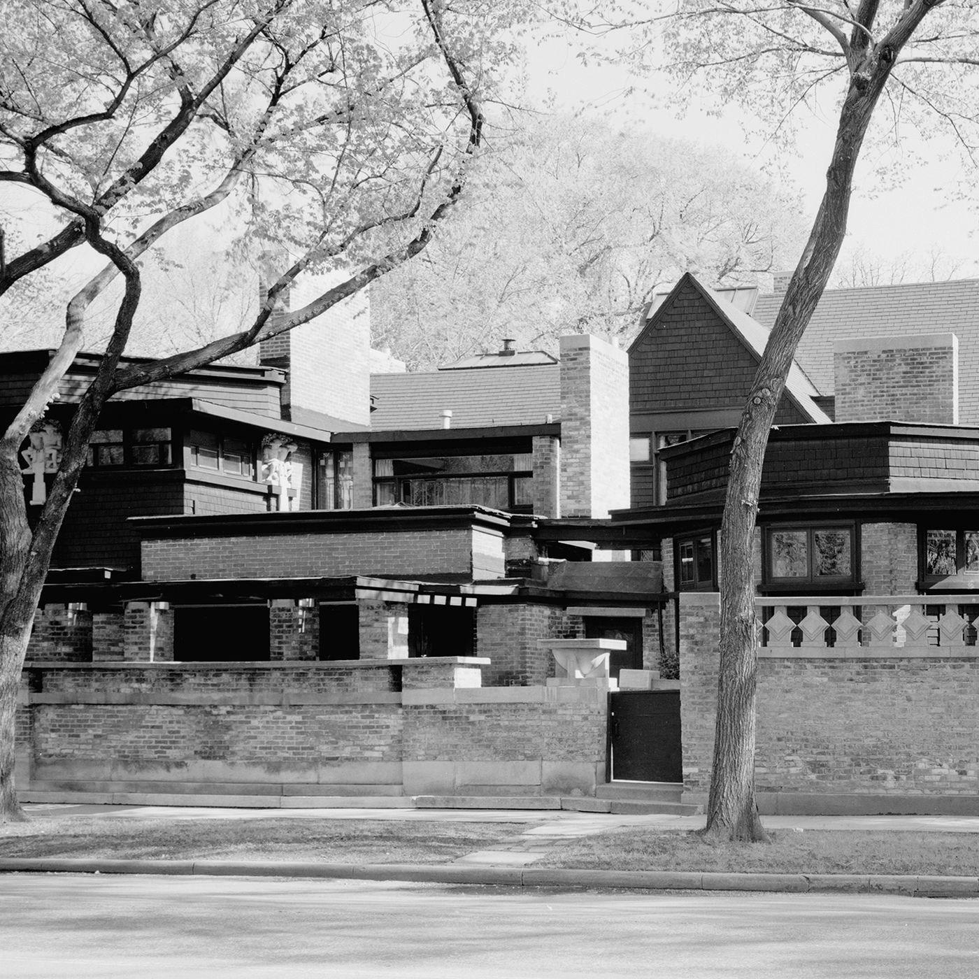 Becoming Frank Lloyd Wright Curbed   Frank Lloyd Wright Stairs   Basement   Dorm   Design   Obras   Floor Plan