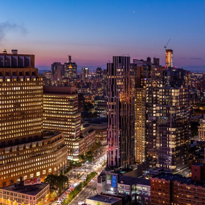 Nyc S In Downtown Brooklyn A Guide