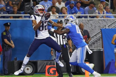 Image result for patriots vs lions