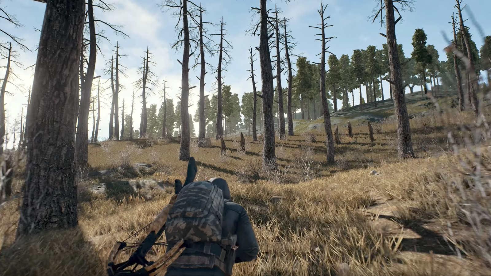 PlayerUnknowns Battlegrounds Is Coming As A Console