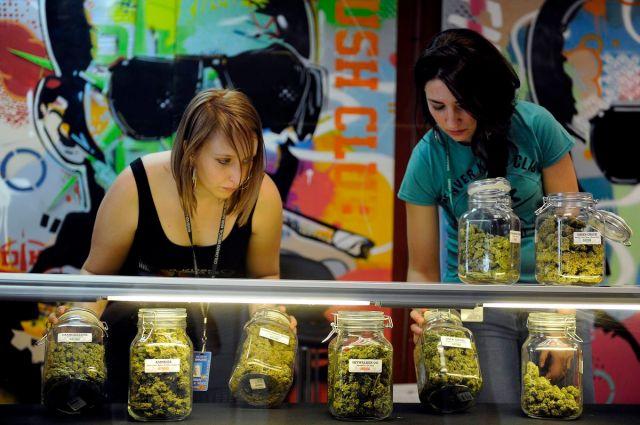 marijuana business Colorado