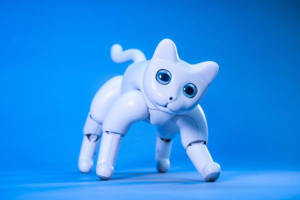 There's a robot cat you can back on Kickstarter - The Verge