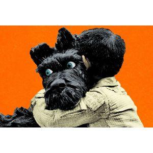 san francisco 7b702 ada9e Deluxe Aaron Rodgers Dog Jersey Aaron Rodgers Dog Jersey ...