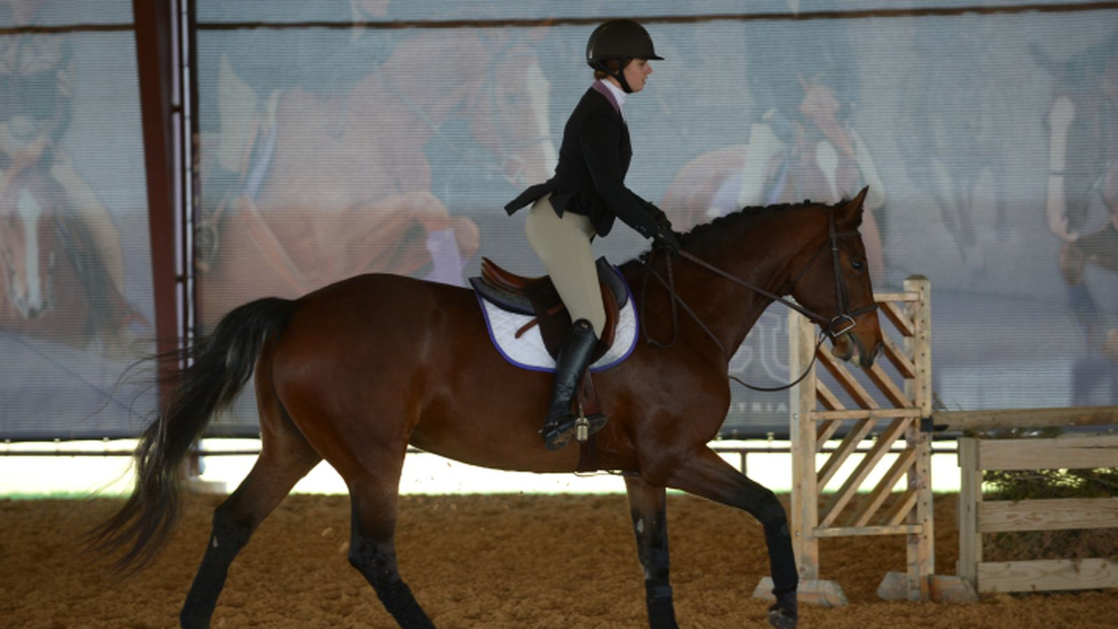 Tcu Equestrian Misses National Championship Title By A