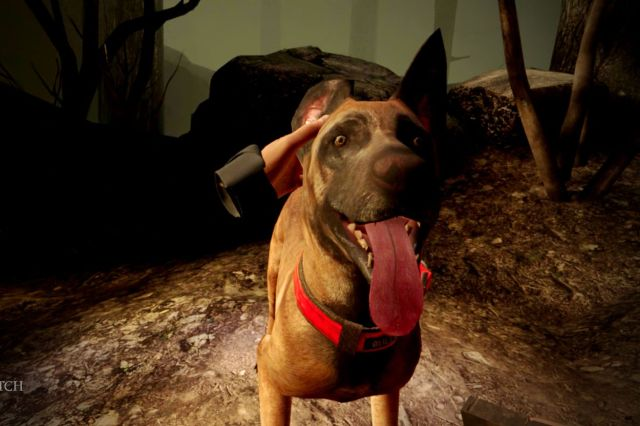 Blair Witch: Oculus Quest Edition screenshot featuring Bullet, your dog