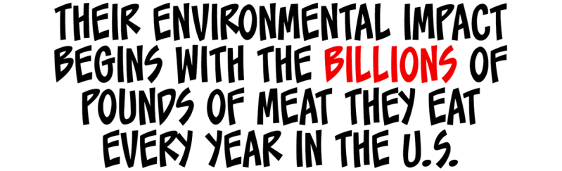 Their environmental impact begins with the billions of pounds of meat they eat every year.