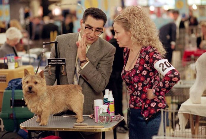 Eugene Levy whispers something to Catherine O'Hara while grooming a small dog