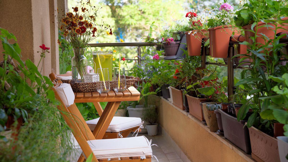 urban gardening ideas tips and
