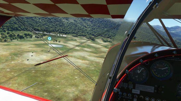 Black Bears in side Yosemite National Park in Microsoft Flight Simulator